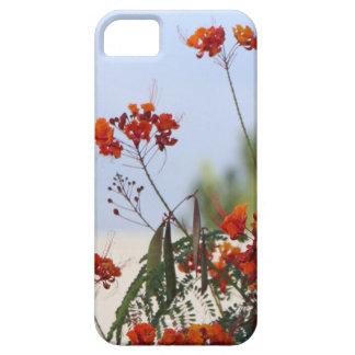 Mexican Bird of Paradise iPhone 5 Case