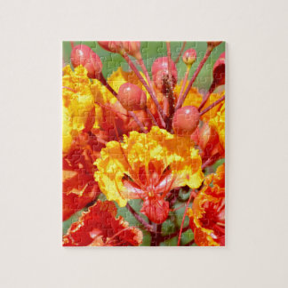 Mexican Bird of Paradise Jigsaw Puzzle