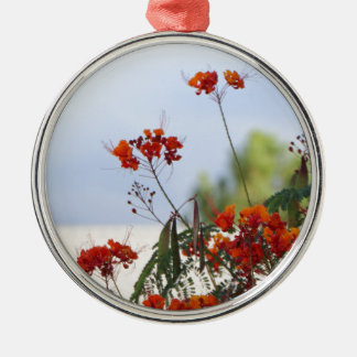 Mexican Bird of Paradise Metal Ornament