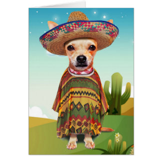 Mexican dog ,chihuahua card