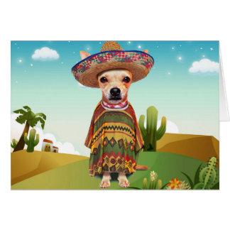 Mexican dog ,chihuahua card