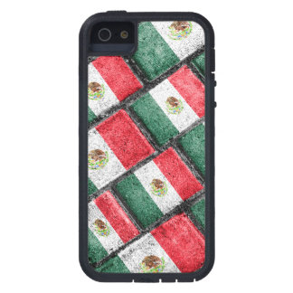 Mexican Flag Pattern Design Case For iPhone 5
