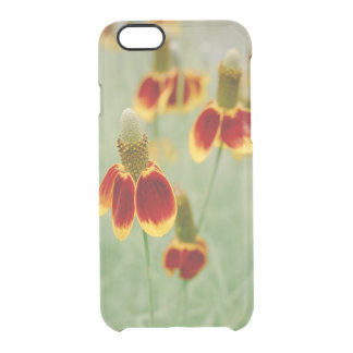 Mexican Hat Texas Wildflowers Clear iPhone 6/6S Case
