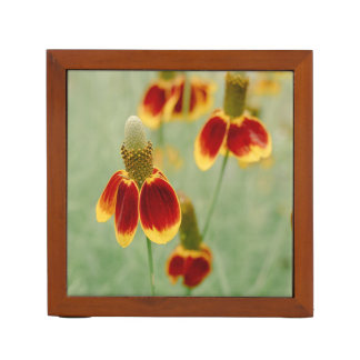 Mexican Hat Texas Wildflowers Desk Organiser