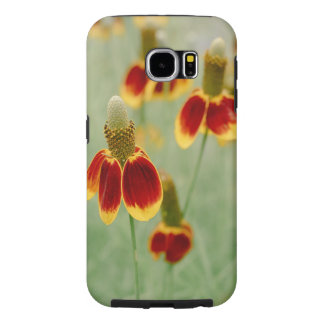 Mexican Hat Texas Wildflowers Samsung Galaxy S6 Cases