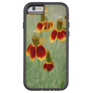Mexican Hat Texas Wildflowers Tough Xtreme iPhone 6 Case