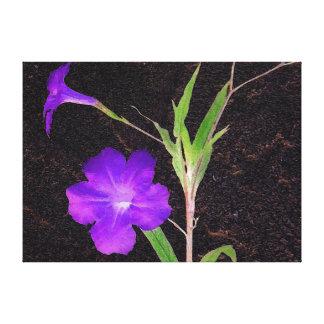 Mexican Petunia Purple Canvas Print