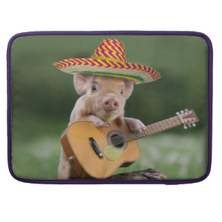 mexican pig - pig guitar - funny pig sleeve for MacBooks