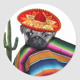 Mexican pug dog round sticker