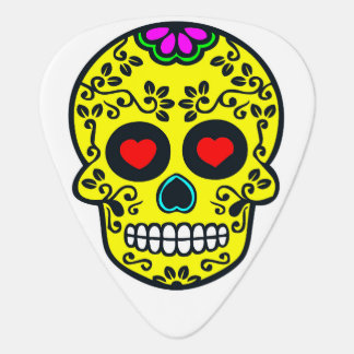 mexican skull guitar pick