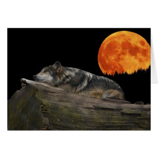 Mexican Wolf & Moon Card