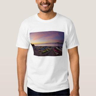 Mexico, Baja, Sea of Cortez. Sea kayaks and Tee Shirts