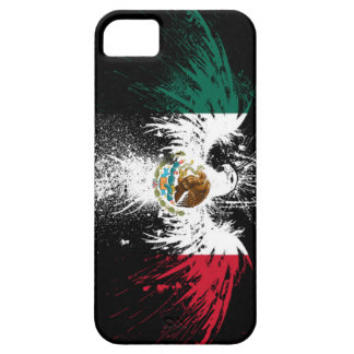 Mexico iPhone 5/5S Case