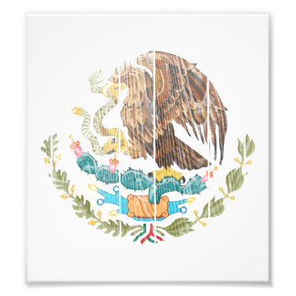 Mexico Coat Of Arms Photograph
