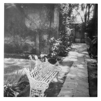 MEXICO, D.F., Mexico City, COYOACAN: Bench at Large Square Tile