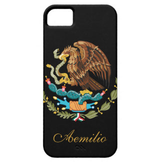 Mexico Flag iPhone 5 Covers