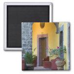 Mexico, San Miguel de Allende, Archway entrance Refrigerator Magnets