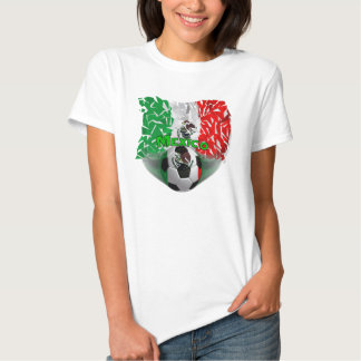 Mexico Shatters Soccer Ladies ComfortSoft T-Shirt