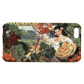 Mexico vintage travel cases iPhone 5C cover