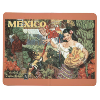 Mexico vintage travel pocket journal