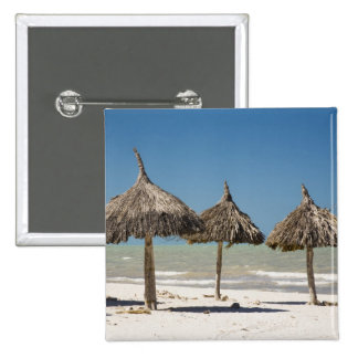 Mexico, Yucatan Peninsula, Progreso. Thatch 15 Cm Square Badge