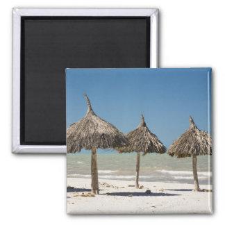 Mexico, Yucatan Peninsula, Progreso. Thatch Magnet