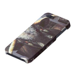 Mezcal Head iPhone 5/5S Cases