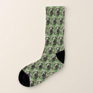Mia Socks 1