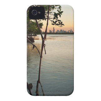 Miami and Mangroves at Sunset Case-Mate iPhone 4 Cases