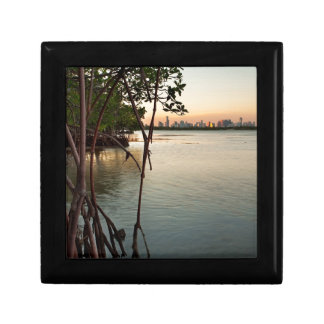 Miami and Mangroves at Sunset Gift Box