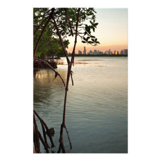 Miami and Mangroves at Sunset Stationery