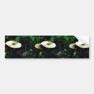 Mica Cap Mushroom Bumper Stickers