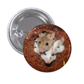 Mice in Bread Pin
