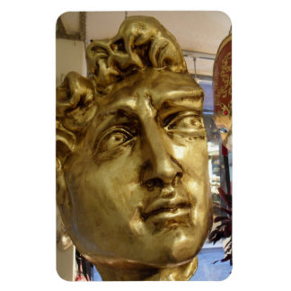 Michael Angelo's David Mask Venice Rectangular Photo Magnet