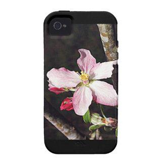 Michigan Apple Blossom iPhone 4/4S Cases