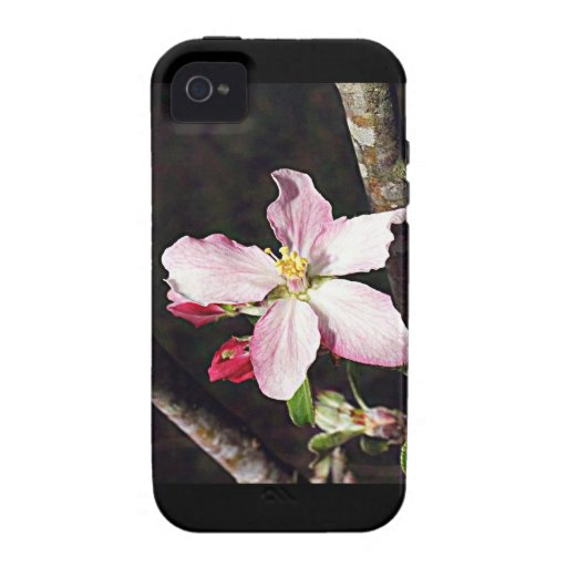 Michigan Apple Blossom iPhone 4/4S Cases