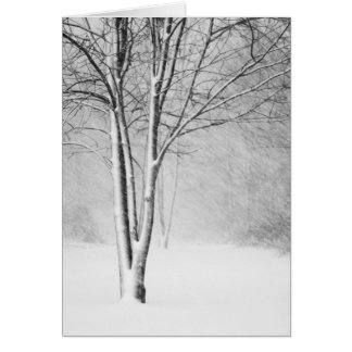 Michigan Blizzard Greeting Card