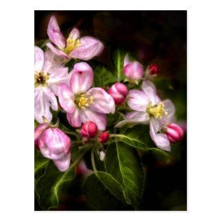 Michigan Blooms Postcard