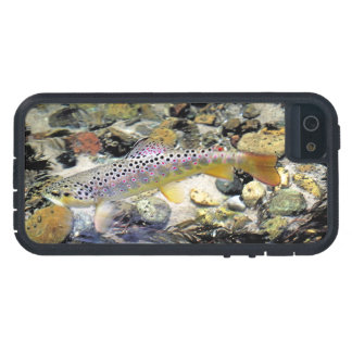 Michigan Brown Trout iPhone 5 Cases