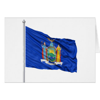 Michigan Flag Note Cards