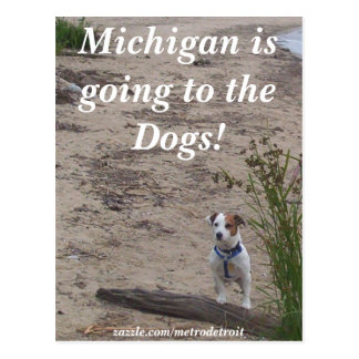 Michigan is going to the Dogs! Postcard