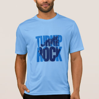 Michigan (MI). Turnip Rock - Colour Logo T-Shirt