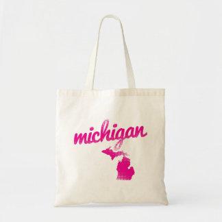 Michigan state in pink