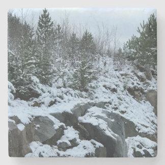 Michigan Winter Landscape Coaster