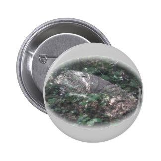 Micrathena Spider Orb Web Coordinating Items 6 Cm Round Badge
