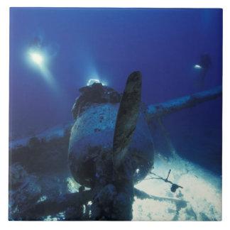 Micronesia, Palau, World Heritage Site. Divers Large Square Tile