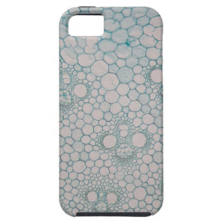 Microscope photo of a bamboo stem. iPhone 5 cover