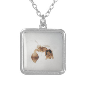 Microscope photo of an ant silver plated necklace