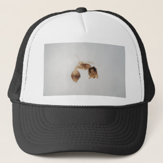 Microscope photo of an ant trucker hat