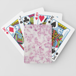 Microscope photo of human blood with Trypanosoma b Bicycle Playing Cards